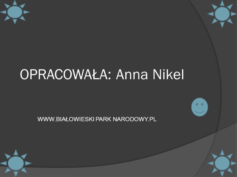 OPRACOWAŁA: Anna Nikel WWW.BIAŁOWIESKI PARK NARODOWY.PL