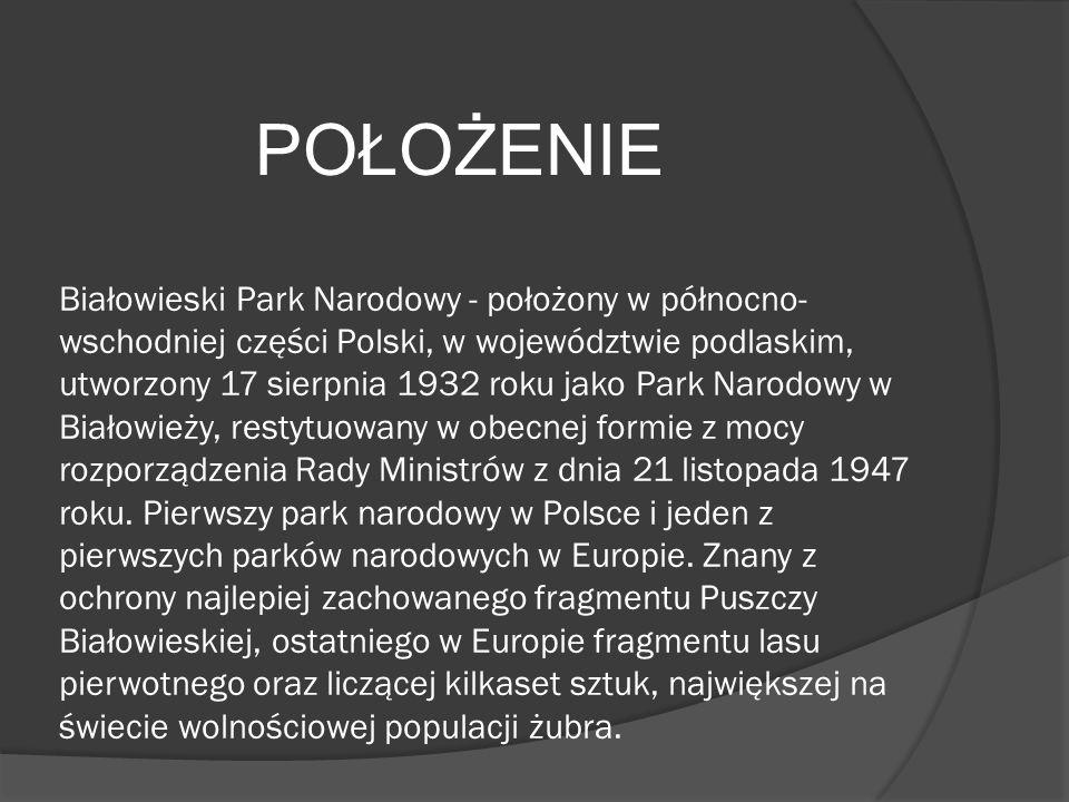 Białowieski Park Narodowy - położony w północno- wschodniej części Polski, w województwie podlaskim, utworzony 17 sierpnia 1932 roku jako Park Narodowy w Białowieży, restytuowany w obecnej formie z mocy rozporządzenia Rady Ministrów z dnia 21 listopada 1947 roku.