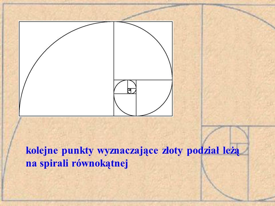 8 5 3 2 11 Liczby Fibonacciego a złoty prostokąt