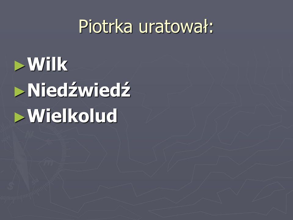 Piotrka uratował: Wilk Wilk Niedźwiedź Niedźwiedź Wielkolud Wielkolud