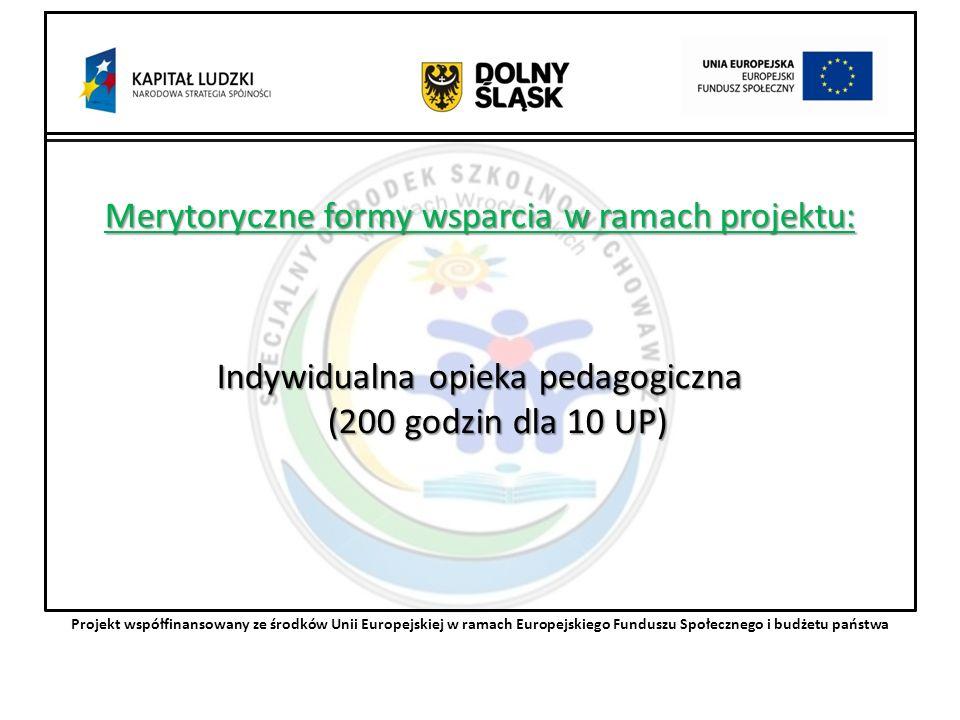 Merytoryczne formy wsparcia w ramach projektu: Indywidualna opieka pedagogiczna (200 godzin dla 10 UP) Projekt współfinansowany ze środków Unii Europejskiej w ramach Europejskiego Funduszu Społecznego i budżetu państwa