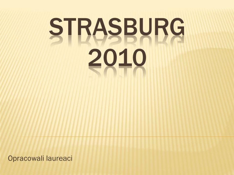 Nasza przygoda ze Strasburgiem rozpoczęła się w kwietniu, gdzie pod czujnym okiem pani profesor Kobielskiej poznawaliśmy historię Unii Europejskiej, jej państwa członkowskie, terminy, skróty, komisarzy, posłów, partie i wszystkie inne trudne określenia.