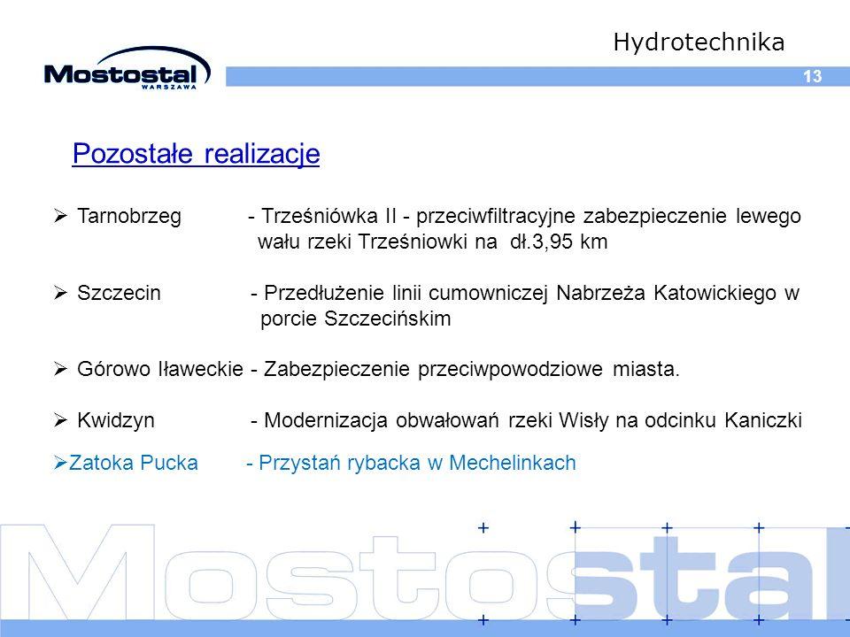 13 Hydrotechnika Tarnobrzeg - Trześniówka II - przeciwfiltracyjne zabezpieczenie lewego w wału rzeki Trześniowki na dł.3,95 km Szczecin - Przedłużenie