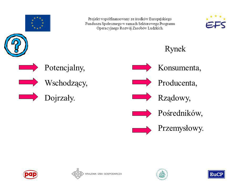 Projekt współfinansowany ze środków Europejskiego Funduszu Społecznego w ramach Sektorowego Programu Operacyjnego Rozwój Zasobów Ludzkich. Rynek Poten