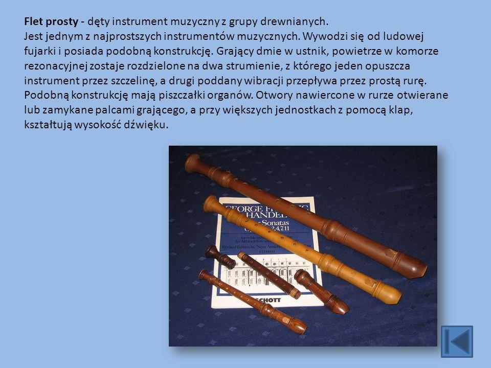 Flet prosty - dęty instrument muzyczny z grupy drewnianych.