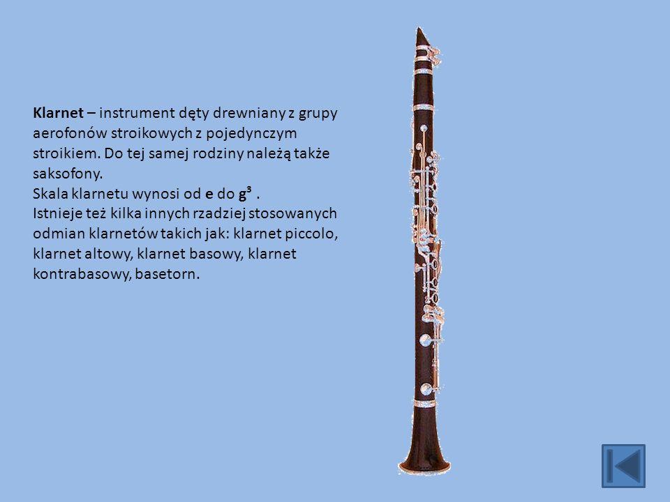 Klarnet – instrument dęty drewniany z grupy aerofonów stroikowych z pojedynczym stroikiem.