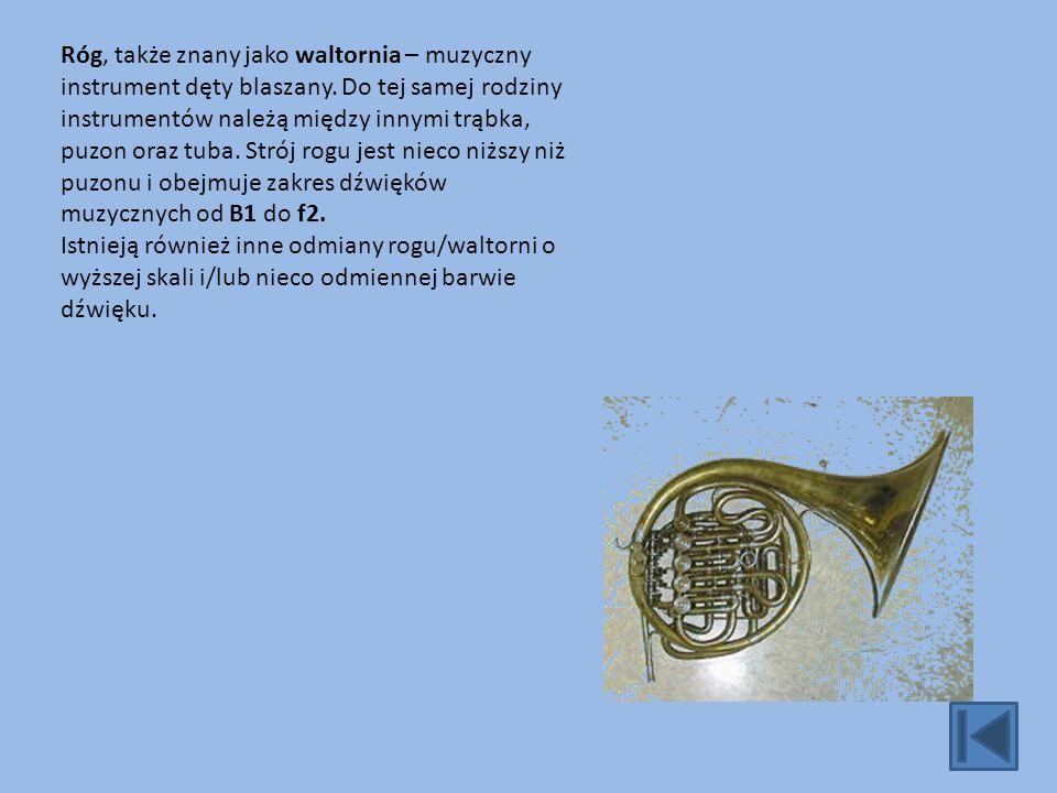 Puzon - jest zaliczany do grupy instrumentów dętych blaszanych.
