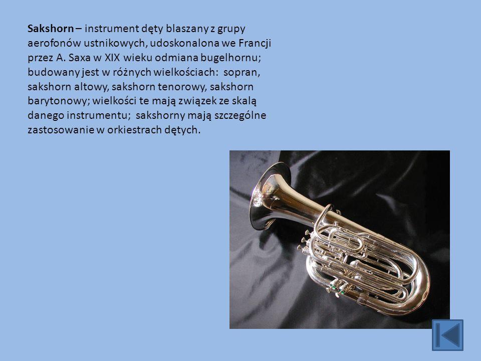 Instrument dęty drewniany – instrument dęty, w którym wibratorem jest drewniany stroik, bądź krawędź, o którą rozpraszany jest strumień powietrza.