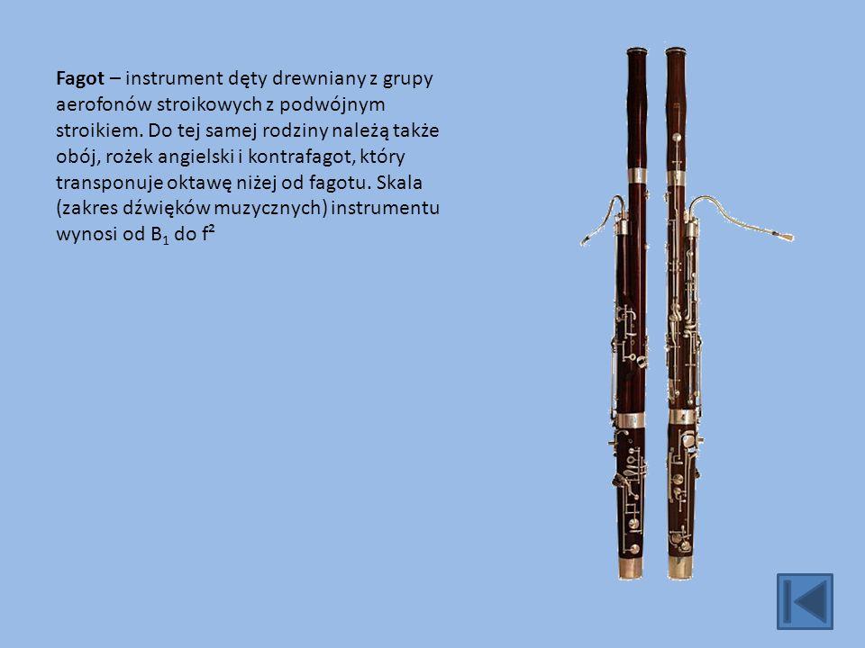 Fagot – instrument dęty drewniany z grupy aerofonów stroikowych z podwójnym stroikiem.