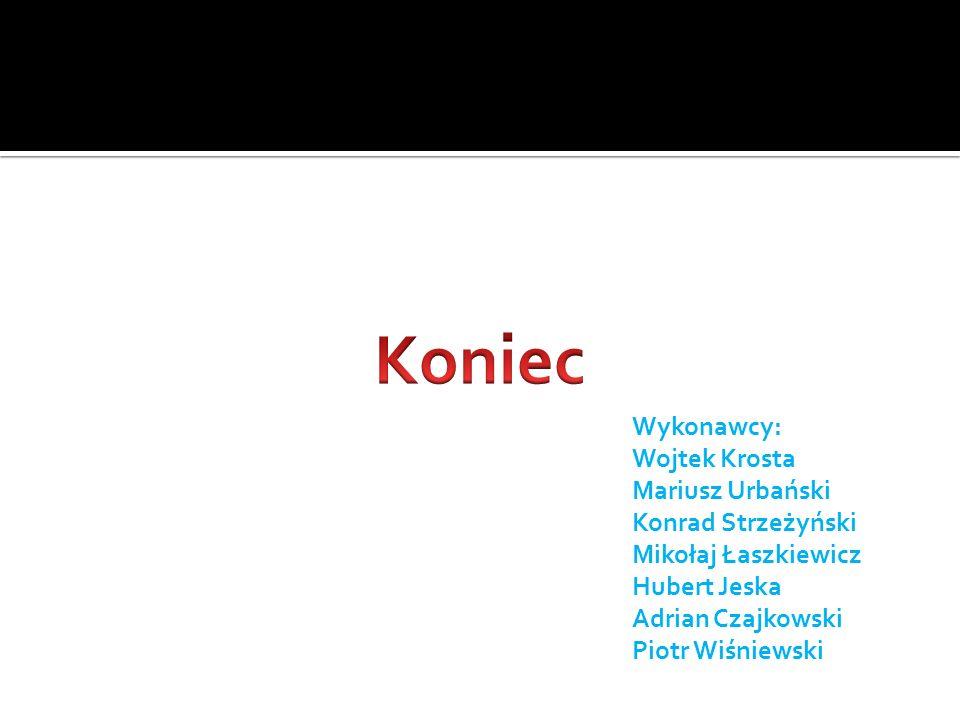 Wykonawcy: Wojtek Krosta Mariusz Urbański Konrad Strzeżyński Mikołaj Łaszkiewicz Hubert Jeska Adrian Czajkowski Piotr Wiśniewski