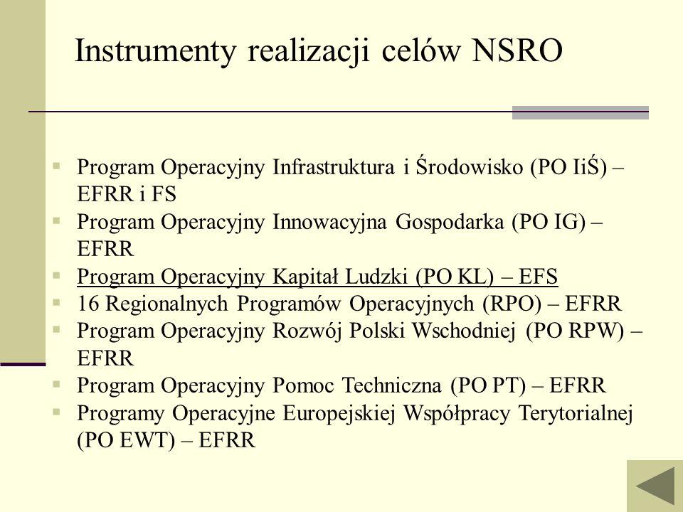 Instrumenty realizacji celów NSRO Program Operacyjny Infrastruktura i Środowisko (PO IiŚ) – EFRR i FS Program Operacyjny Innowacyjna Gospodarka (PO IG
