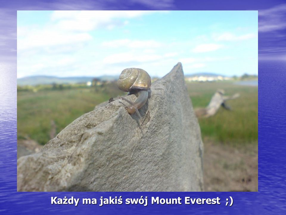 Każdy ma jakiś swój Mount Everest ;) Każdy ma jakiś swój Mount Everest ;)