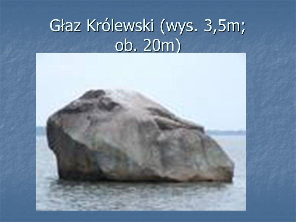 Głaz Królewski (wys. 3,5m; ob. 20m)
