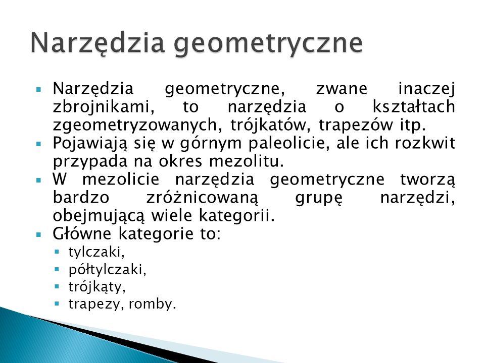 Narzędzia geometryczne, zwane inaczej zbrojnikami, to narzędzia o kształtach zgeometryzowanych, trójkatów, trapezów itp. Pojawiają się w górnym paleol