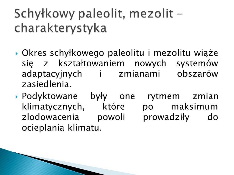 Są to narzędzia, których geneza związana jest z górnym paleolitem, ale upowszechnienie nastąpiło w paleolicie schyłkowym.