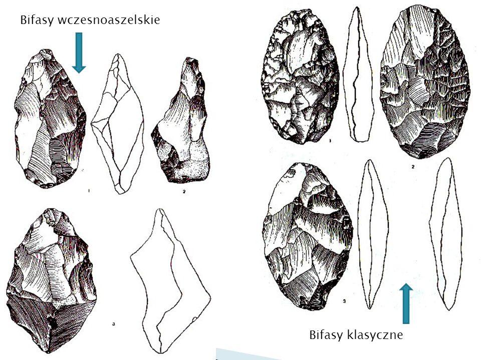 Nieumiarowe (najczęściej twardotłukowe) Sercowate i migdałowate Trójkątne Owalne Kończaste (w tym lancetowate, piki i in.).