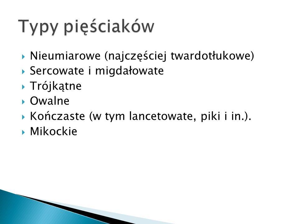 Nieumiarowe (najczęściej twardotłukowe) Sercowate i migdałowate Trójkątne Owalne Kończaste (w tym lancetowate, piki i in.). Mikockie