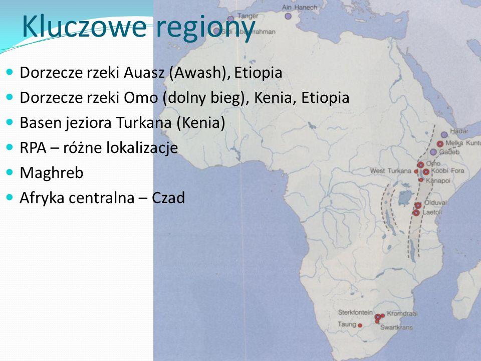 Kluczowe regiony Dorzecze rzeki Auasz (Awash), Etiopia Dorzecze rzeki Omo (dolny bieg), Kenia, Etiopia Basen jeziora Turkana (Kenia) RPA – różne lokal