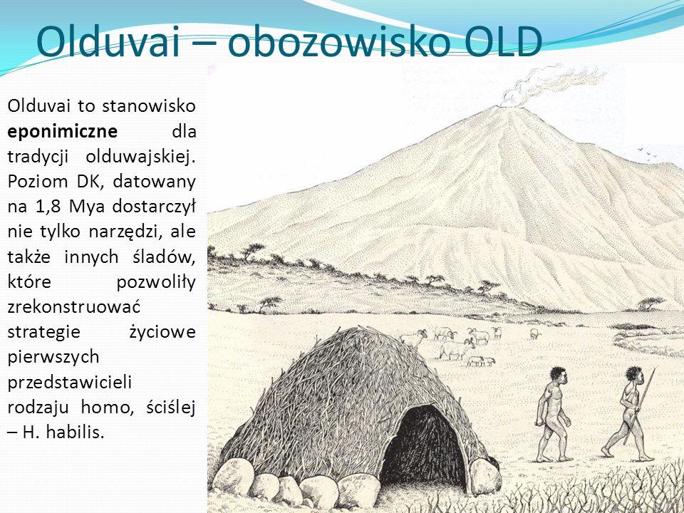 Olduvai – obozowisko OLD Olduvai to stanowisko eponimiczne dla tradycji olduwajskiej. Poziom DK, datowany na 1,8 Mya dostarczył nie tylko narzędzi, al