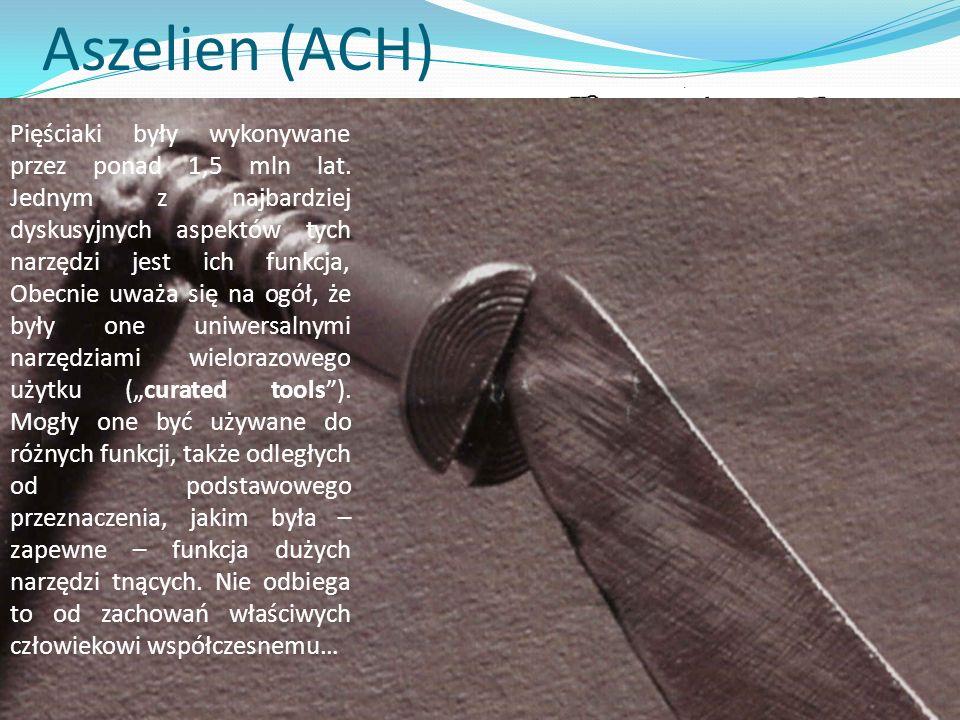 Aszelien (ACH) Około 1,7 – 1,3 mln lat temu pojawiają się zespoły nowej jednostki kulturowej – aszelienu. Nazwa (eponimiczna) pochodzi – jak w przypad