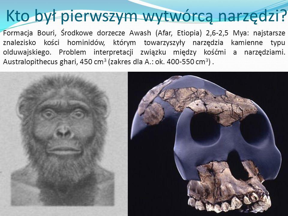 Kto był pierwszym wytwórcą narzędzi? ? Formacja Bouri, Środkowe dorzecze Awash (Afar, Etiopia) 2,6-2,5 Mya: najstarsze znalezisko kości hominidów, któ