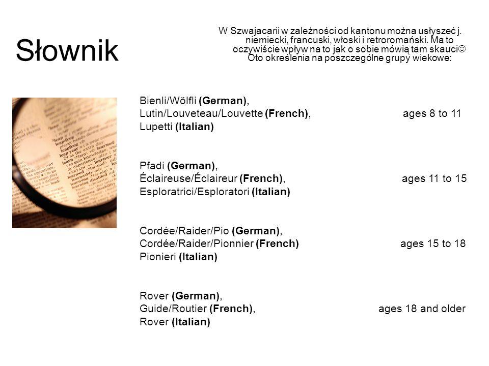 Słownik W Szwajacarii w zależności od kantonu można usłyszeć j. niemiecki, francuski, włoski i retroromański. Ma to oczywiście wpływ na to jak o sobie