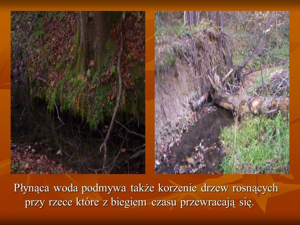 To największe osuwisko które wydrążyła rzeka.