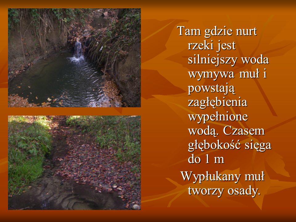 W miejscu gdzie woda tworzy uskok płynąca tam rzeka małe wodospady.