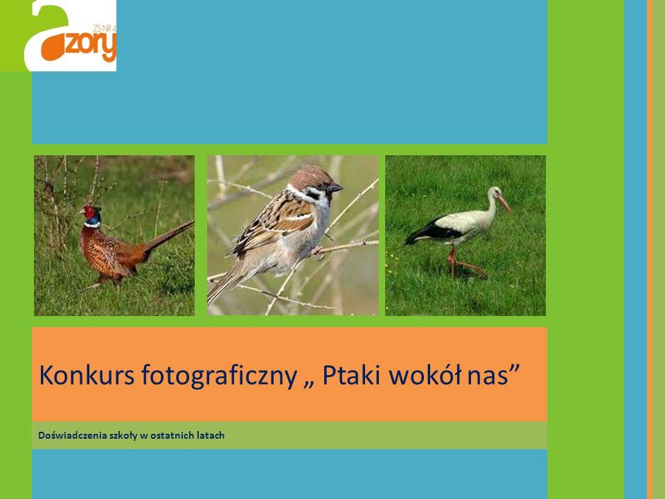 Doświadczenia szkoły w ostatnich latach Konkurs fotograficzny Ptaki wokół nas