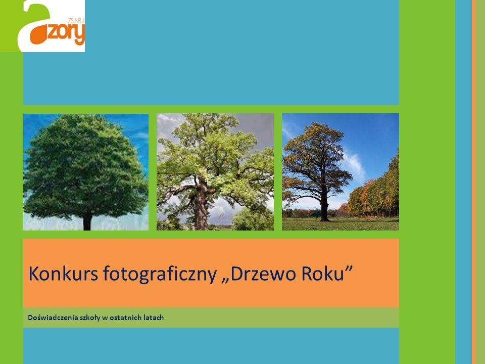 Doświadczenia szkoły w ostatnich latach Konkurs fotograficzny Drzewo Roku