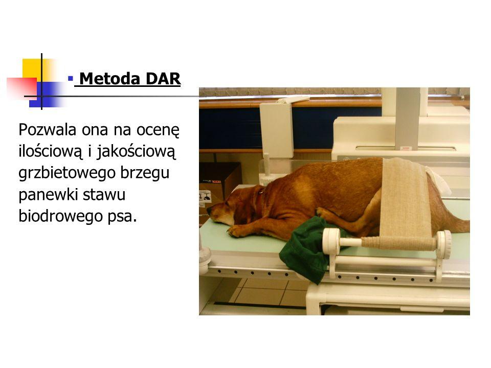 Metoda DAR Pozwala ona na ocenę ilościową i jakościową grzbietowego brzegu panewki stawu biodrowego psa.