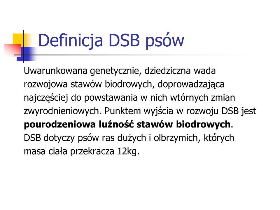 Definicja DSB psów Uwarunkowana genetycznie, dziedziczna wada rozwojowa stawów biodrowych, doprowadzająca najczęściej do powstawania w nich wtórnych z