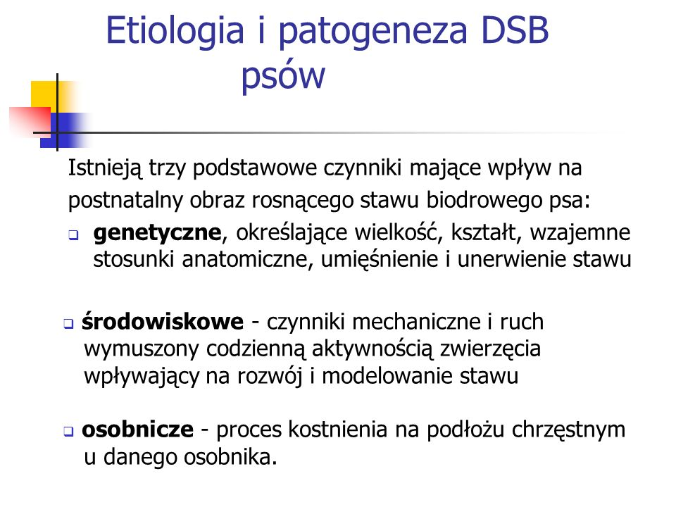 Etiologia i patogeneza DSB psów Istnieją trzy podstawowe czynniki mające wpływ na postnatalny obraz rosnącego stawu biodrowego psa: genetyczne, określ