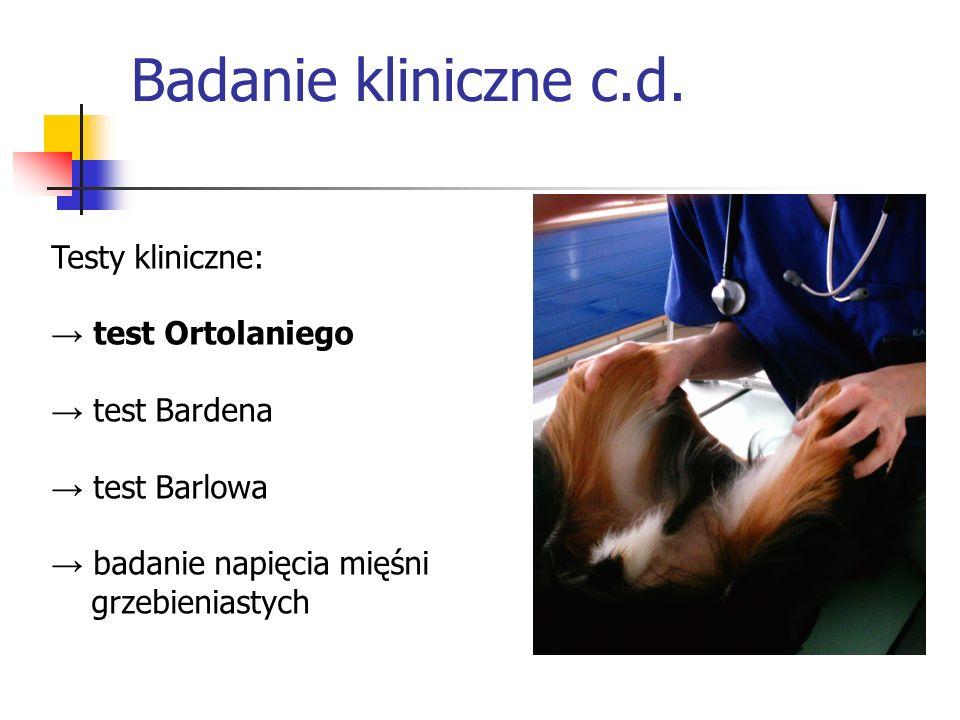 Testy kliniczne: test Ortolaniego test Bardena test Barlowa badanie napięcia mięśni grzebieniastych Badanie kliniczne c.d.