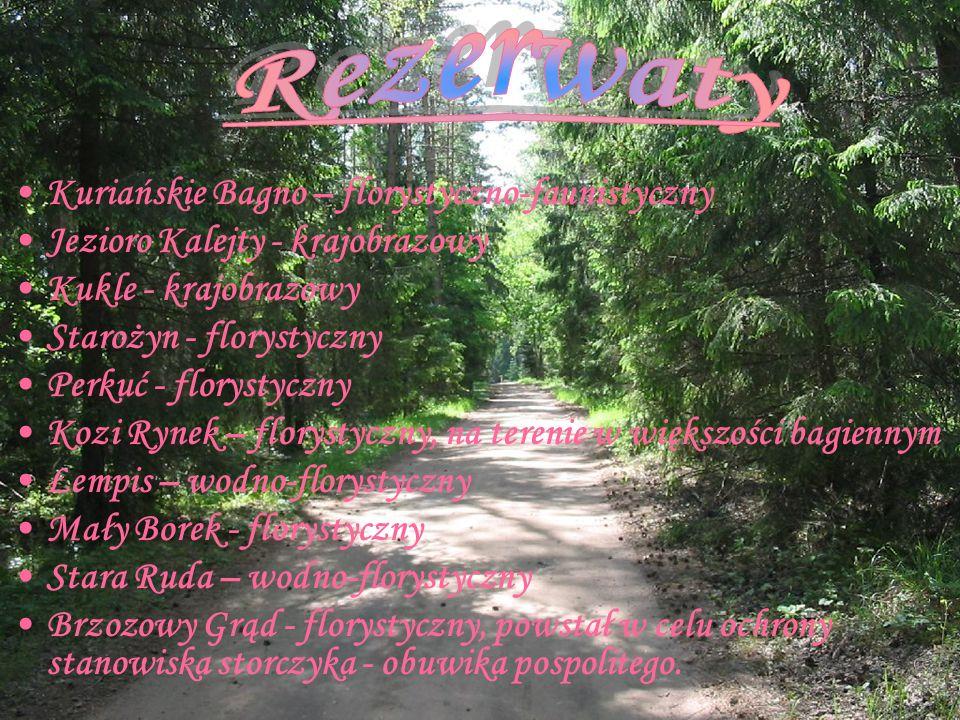 Kuriańskie Bagno – florystyczno-faunistyczny Jezioro Kalejty - krajobrazowy Kukle - krajobrazowy Starożyn - florystyczny Perkuć - florystyczny Kozi Ry
