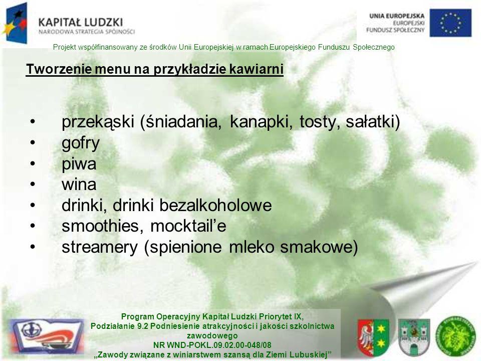 Program Operacyjny Kapitał Ludzki Priorytet IX, Podziałanie 9.2 Podniesienie atrakcyjności i jakości szkolnictwa zawodowego NR WND-POKL.09.02.00-048/0