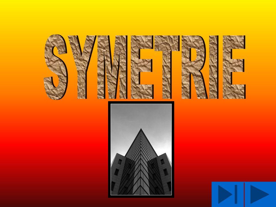 Występowanie symetrii : w matematyce w naturze w architekturze w sztuce w języku polskim