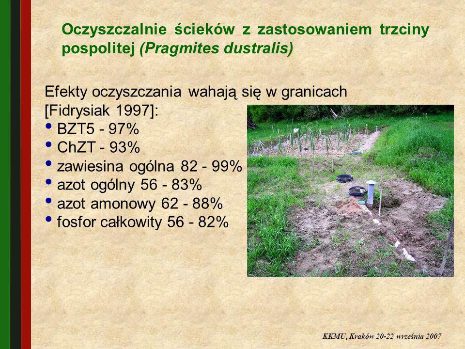 Oczyszczalnie ścieków z zastosowaniem trzciny pospolitej (Pragmites dustralis) Efekty oczyszczania wahają się w granicach [Fidrysiak 1997]: BZT5 - 97%