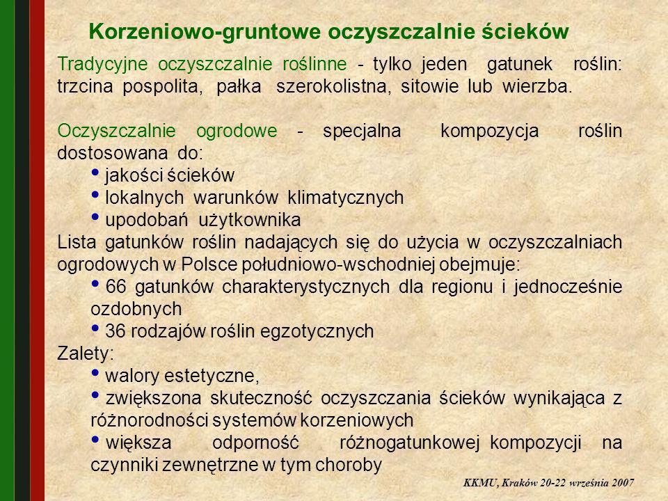 Korzeniowo-gruntowe oczyszczalnie ścieków Tradycyjne oczyszczalnie roślinne - tylko jeden gatunek roślin: trzcina pospolita, pałka szerokolistna, sito