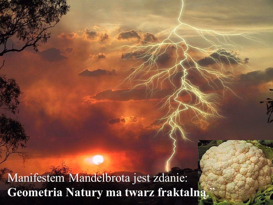 Manifestem Mandelbrota jest zdanie: Geometria Natury ma twarz fraktalną.