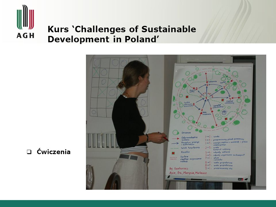 Kurs Challenges of Sustainable Development in Poland : Company project