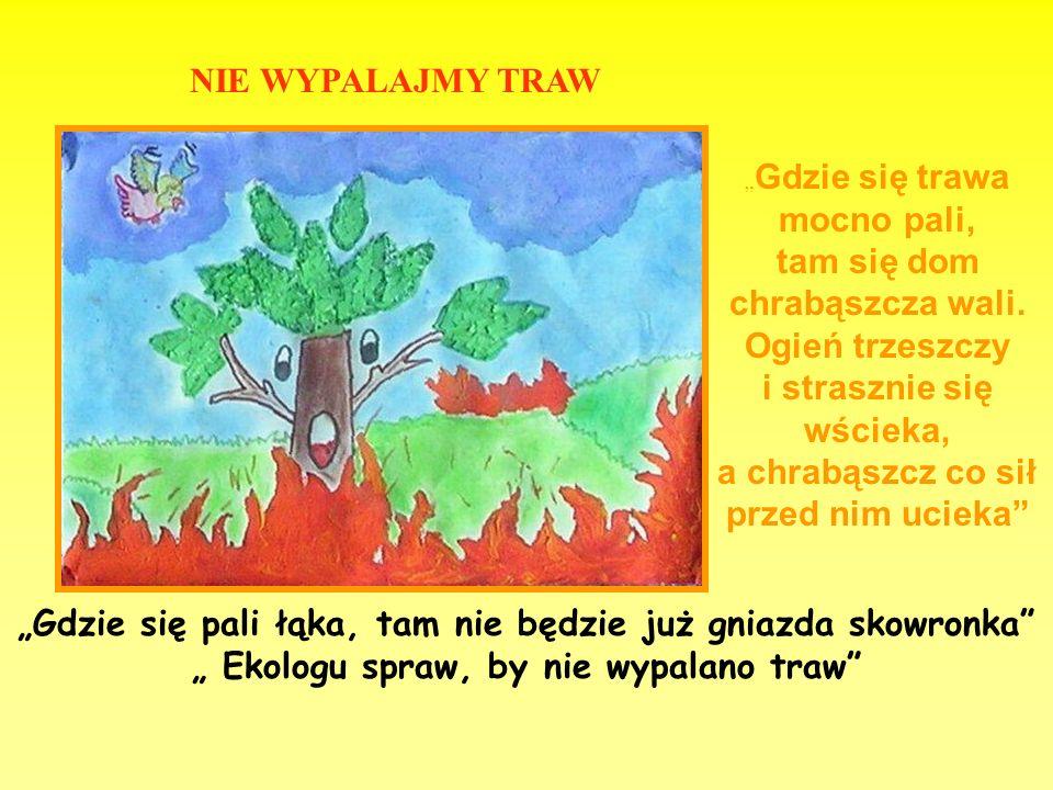 Gdzie się pali łąka, tam nie będzie już gniazda skowronka Ekologu spraw, by nie wypalano traw NIE WYPALAJMY TRAW Gdzie się trawa mocno pali, tam się d