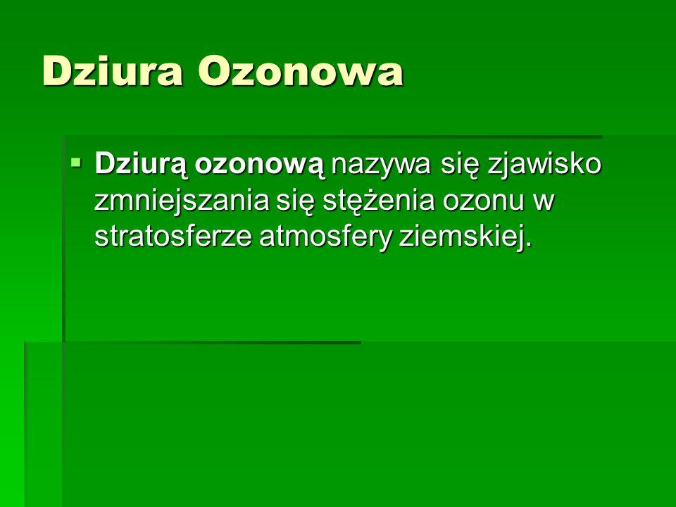 Dziura Ozonowa Dziura Ozonowa Dziura Ozonowa Oddziaływanie dziury ozonowej na żywe organizmy Oddziaływanie dziury ozonowej na żywe organizmy