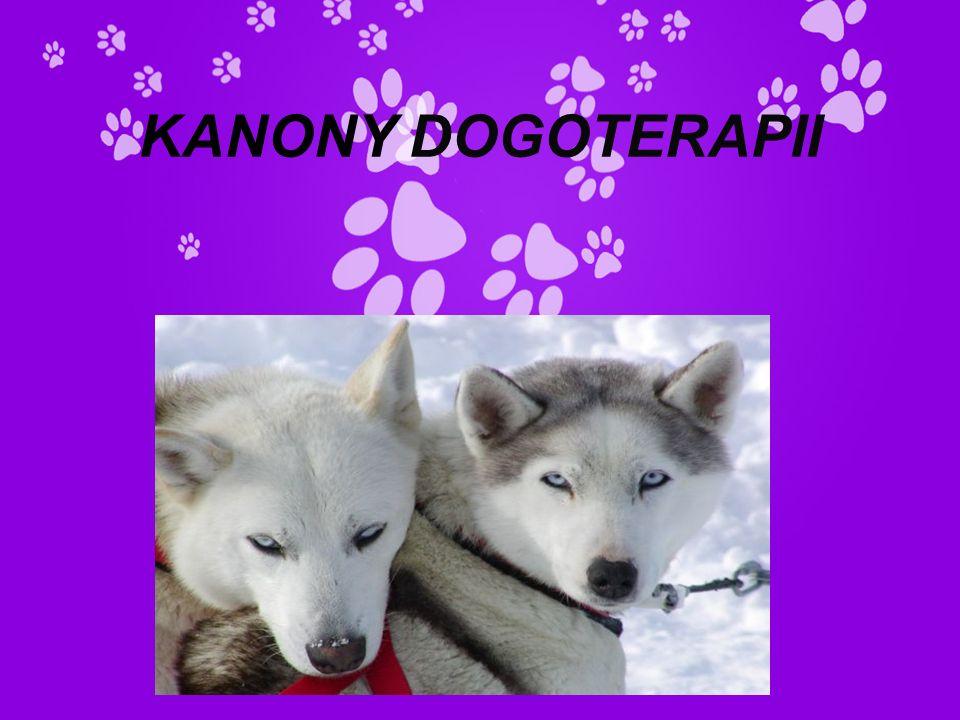 KANONY DOGOTERAPII