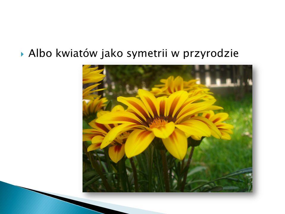 Albo kwiatów jako symetrii w przyrodzie