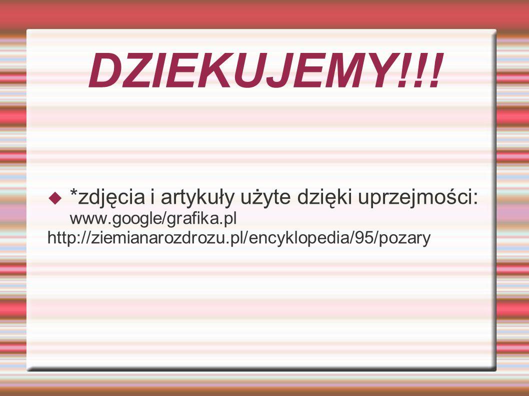 DZIEKUJEMY!!! *zdjęcia i artykuły użyte dzięki uprzejmości: www.google/grafika.pl http://ziemianarozdrozu.pl/encyklopedia/95/pozary