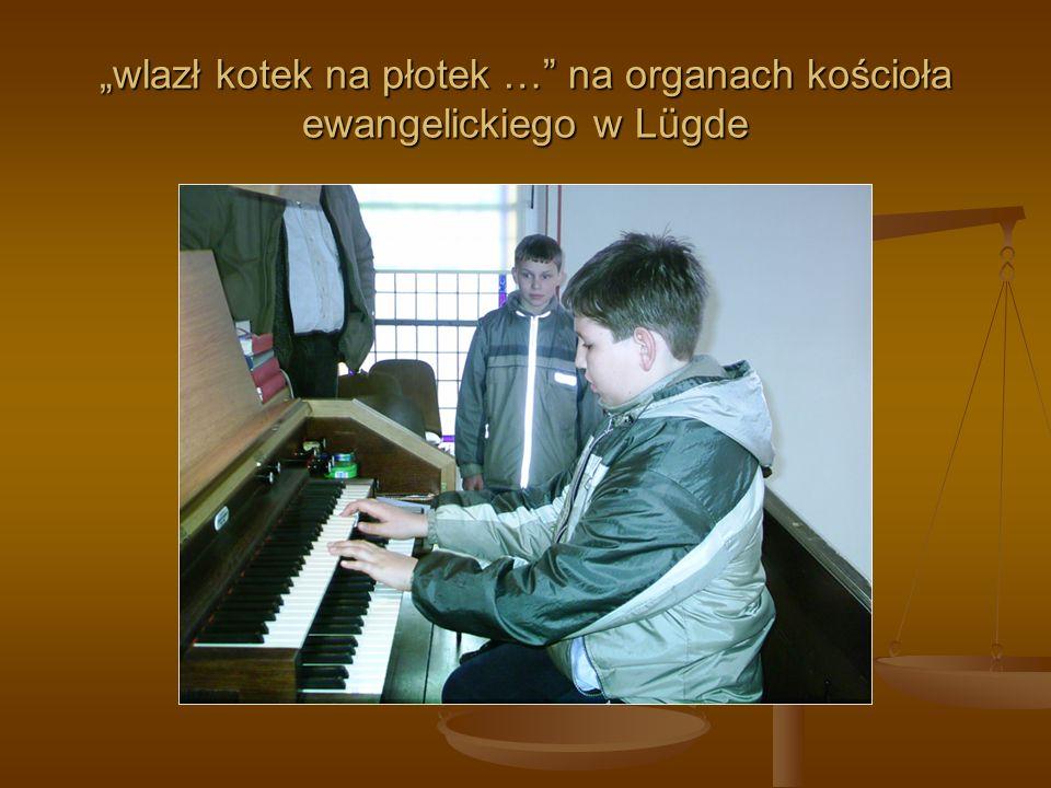 wlazł kotek na płotek … na organach kościoła ewangelickiego w Lügde