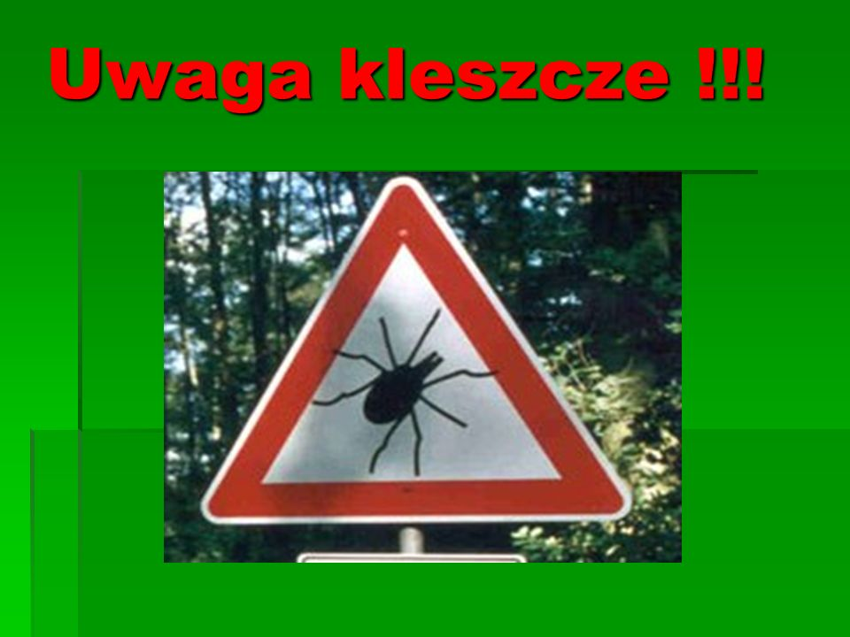 Uwaga kleszcze !!!