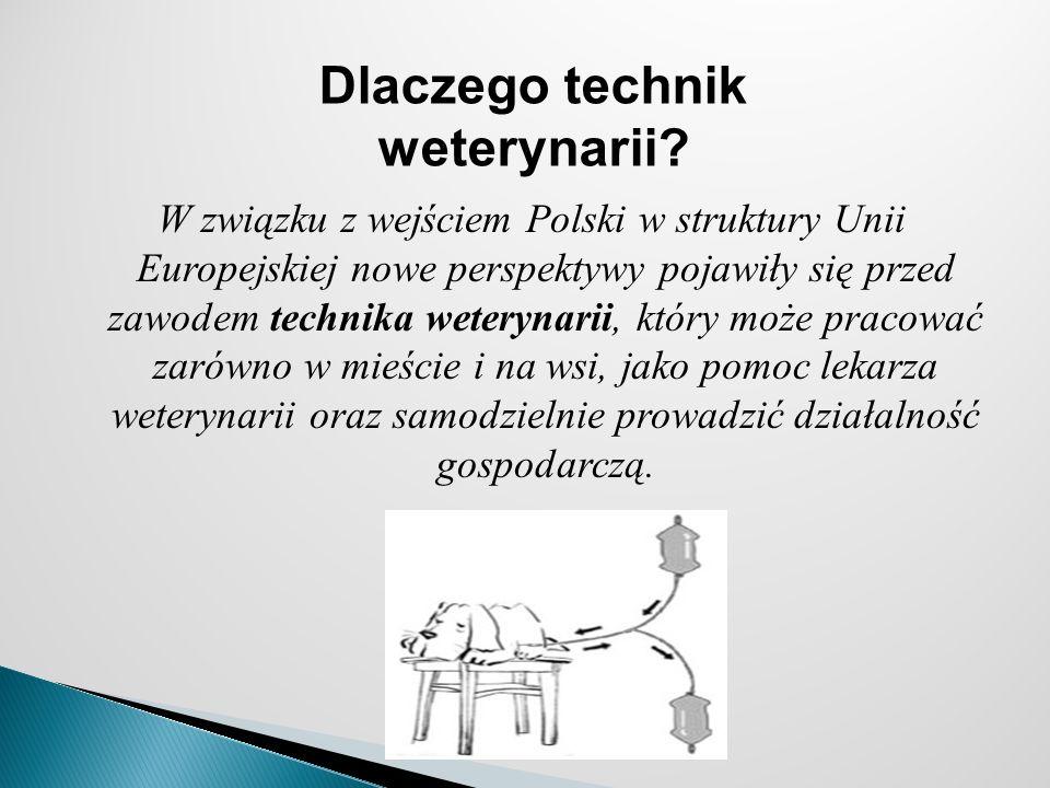 W związku z wejściem Polski w struktury Unii Europejskiej nowe perspektywy pojawiły się przed zawodem technika weterynarii, który może pracować zarówno w mieście i na wsi, jako pomoc lekarza weterynarii oraz samodzielnie prowadzić działalność gospodarczą.