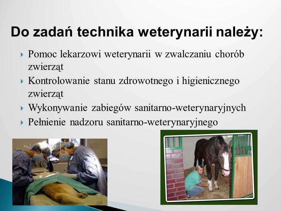Pomoc lekarzowi weterynarii w zwalczaniu chorób zwierząt Kontrolowanie stanu zdrowotnego i higienicznego zwierząt Wykonywanie zabiegów sanitarno-weterynaryjnych Pełnienie nadzoru sanitarno-weterynaryjnego Do zadań technika weterynarii należy: